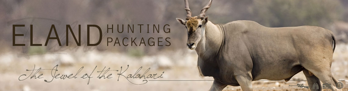 Cape Eland Hunting Packages