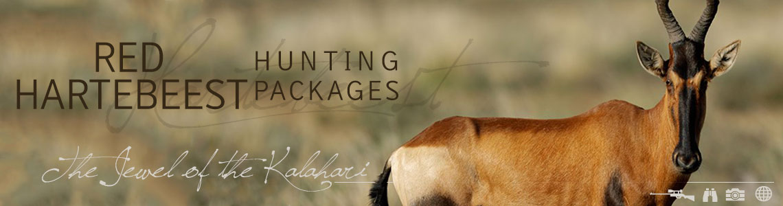 Hunting Red Hartebeest with Tinashe