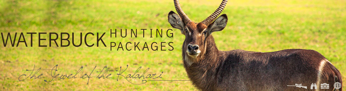 Waterbuck Hunting Packages
